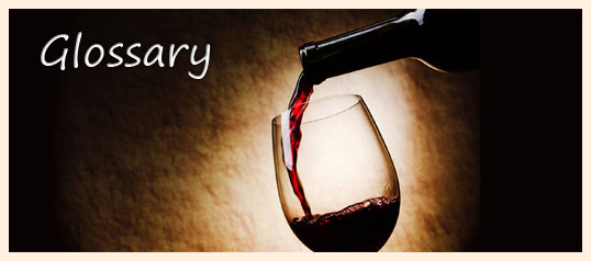 wine-glossary-splash