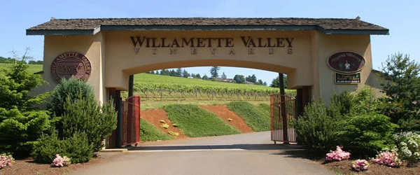WillametteVlyVineyards600